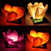 Flower  Water Lanterns